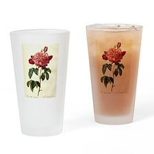 Rosa Gallica Drinking Glass