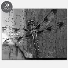Dragonfly Black & White Puzzle