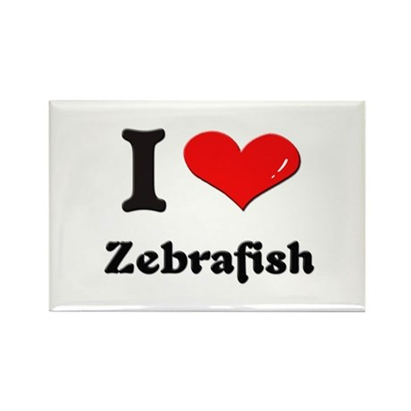 I love zebrafish Rectangle Magnet