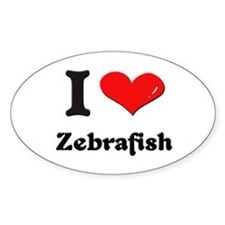 I love zebrafish Oval Decal