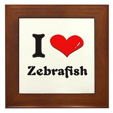 I love zebrafish  Framed Tile