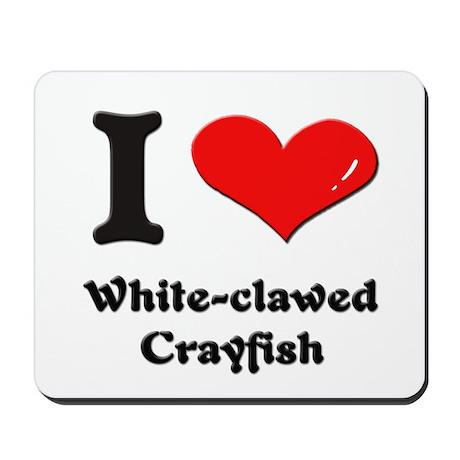 I love white-clawed crayfish Mousepad