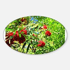 Rowan berries Decal