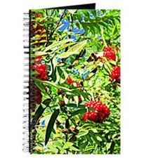 Rowan berries Journal