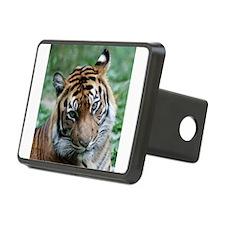 Cute Tigers Hitch Cover