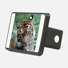 Funny Tigers Hitch Cover
