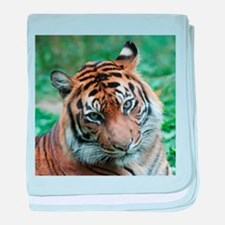 Funny Tigers baby blanket