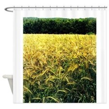 wheatfield Shower Curtain