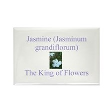 King of Flowers Rectangle Magnet