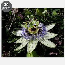 Helaine's Passion Flower Puzzle