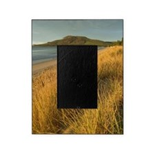 seven mile beach sunset Picture Frame