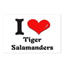 I love tiger salamanders  Postcards (Package of 8)