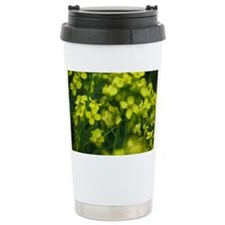 Canola Travel Coffee Mug