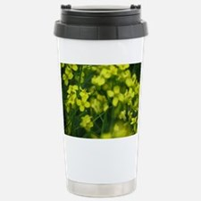 Canola Travel Mug