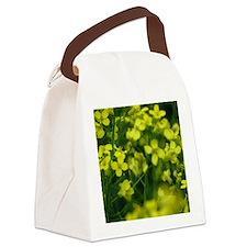 Canola Canvas Lunch Bag