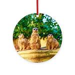 Meerkats standing guard Ornament (Round)