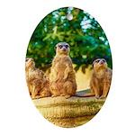 Meerkats standing guard Ornament (Oval)