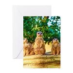 Meerkats standing guard Greeting Cards