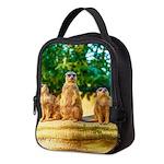 Meerkats standing guard Neoprene Lunch Bag