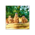 Meerkats standing guard Sticker