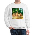 Meerkats standing guard Sweatshirt