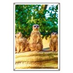 Meerkats standing guard Banner