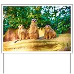 Meerkats standing guard Yard Sign