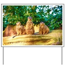 Meerkats standing guard Yard Sign