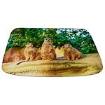 Meerkats standing guard Bathmat