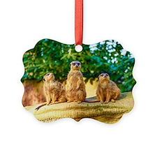 Meerkats standing guard Ornament