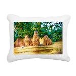 Meerkats standing guard Rectangular Canvas Pillow