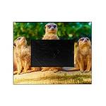 Meerkats standing guard Picture Frame