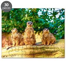 Meerkats standing guard Puzzle