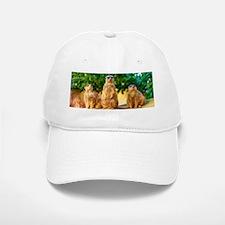 Meerkats standing guard Baseball Cap