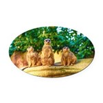 Meerkats standing guard Oval Car Magnet