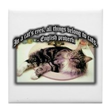 Cats Eyes Tile Coaster