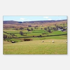 Sheep grazing near Wensleydale Decal