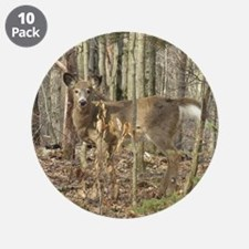 """Whitetail Deer 3.5"""" Button (10 pack)"""