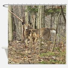 Whitetail Deer Shower Curtain
