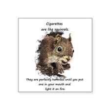 Quit Smoking Motivational Fun Squirrel Quote Stick