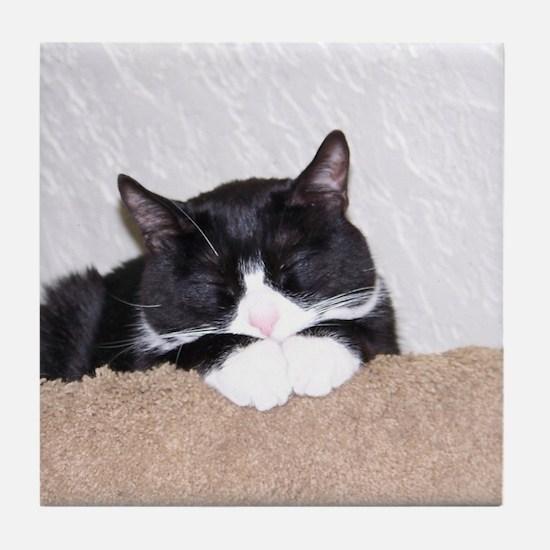 Sweet Kitty Tile Coaster