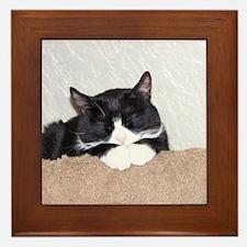Sweet Kitty Framed Tile