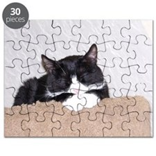 Sweet Kitty Puzzle