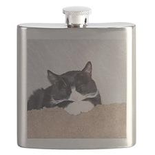 Sweet Kitty Flask