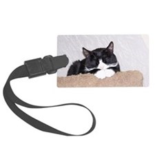 Sweet Kitty Luggage Tag
