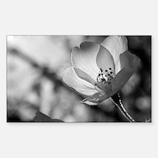 Cherry Blossom Flower Decal