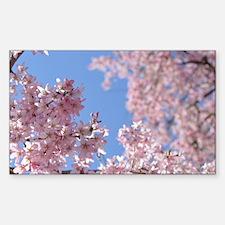 Cherry blossom Tree Decal