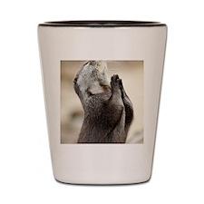 Otter Praying Shot Glass