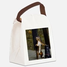 Squirell Canvas Lunch Bag