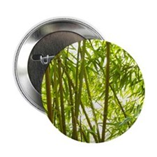 """Bamboo Forest 2.25"""" Button"""